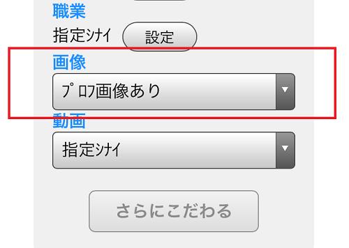 掲示板検索のプロフ画像あり指定